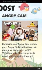 AngryBirdsRoost_13
