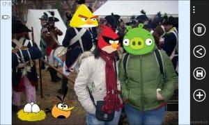 AngryBirdsRoost_17