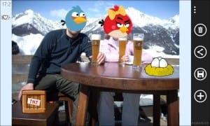 AngryBirdsRoost_19