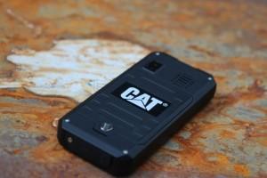 Cat_B30_3