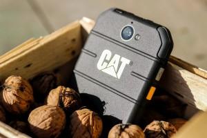 Cat_S30_07